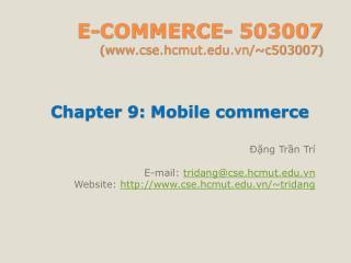 E-COMMERCE- 503007 (cse.hcmut.vn/~c503007)