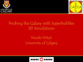 Probing the Galaxy with Superbubbles 3D Simulations