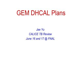 GEM DHCAL Plans