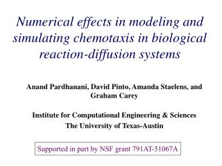 Numerical effects in modeling and simulating chemotaxis in biological reaction-diffusion systems