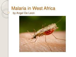 Malaria in West Africa