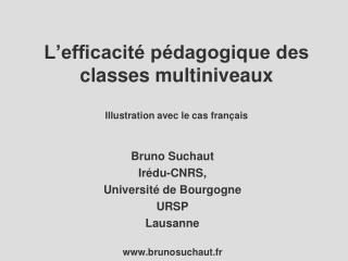 L'efficacité pédagogique des classes multiniveaux Illustration avec le cas français