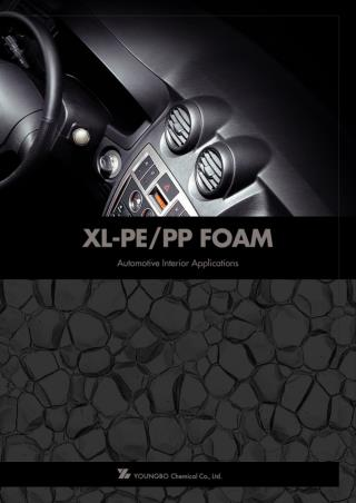 XL PE Car Catalog