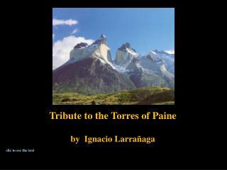 Tribute  to the Torres  of  Paine by Ignacio Larrañaga