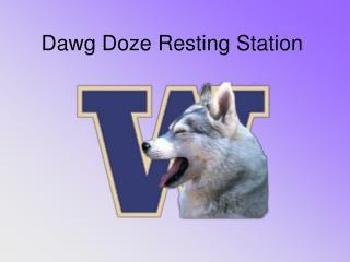 Dawg Doze Resting Station