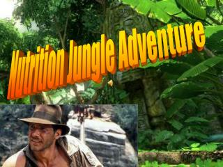 Nutrition Jungle Adventure