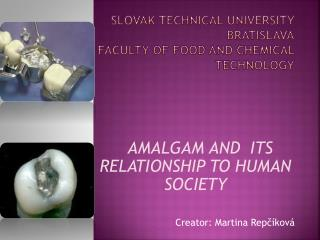 SLOVak TECHNIcal UNIVERsity BRATISLAVa Faculty of food  and  chemical technology