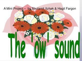 A Mini Project –  by Shulamit Itzhak & Hagit Fargon