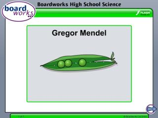 The life and work of Gregor Mendel