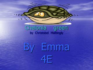 Chelonia    green by  Christobel  Mattingly