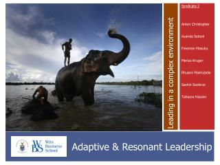Adaptive & Resonant Leadership