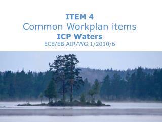 ITEM 4  Common Workplan items ICP Waters ECE/EB.AIR/WG.1/2010/6