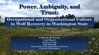 Power, Ambiguity, and Trust: