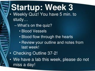 Startup: Week 3