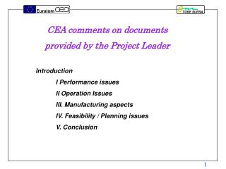 CEA comments on documents provided by the Project Leader