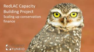 RedLAC Capacity Building  Project Scaling up conservation finance