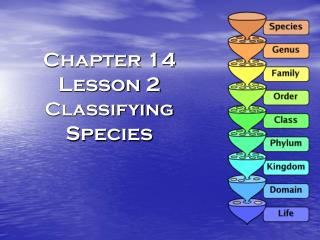 Chapter 14 Lesson 2 Classifying  Species