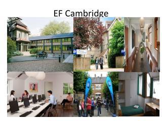 EF Cambridge