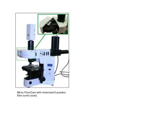Micro-FluorCam with motorized 6-position filter turret (inset)