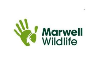 Marwell Wildlife Safety Statement