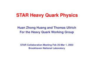 STAR Heavy Quark Physics