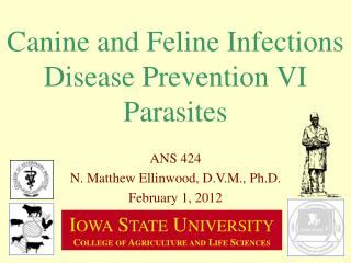 Canine and Feline Infections Disease Prevention VI Parasites