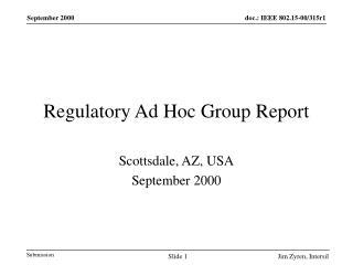 Regulatory Ad Hoc Group Report