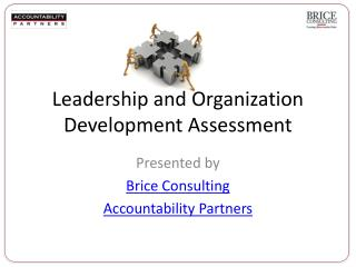 Leadership and Organization  Development  Assessment