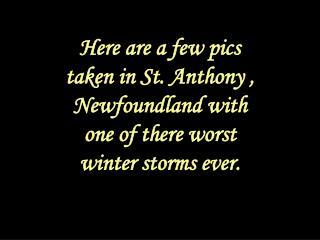 Here are a few pics taken in St. Anthony , Newfoundland with one of there worst winter storms ever.