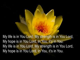 My life is in You Lord, My strength is in You Lord, My hope is in You Lord, In You, it's in You.