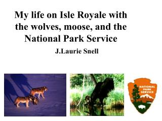 My life on Isle Royale with the wolves, moose, and the National Park Service