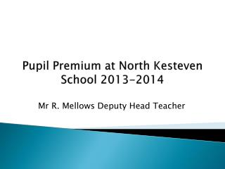 Pupil Premium at North  K esteven School 2013-2014