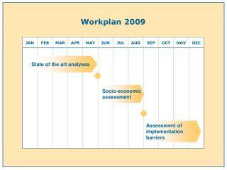 Workplan 2009