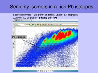 Seniority isomers in n-rich Pb isotopes