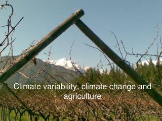 Climate variability, climate change and agriculture
