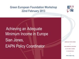 Green European Foundation Workshop 22nd February 2013