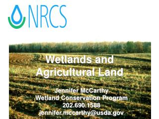 Wetlands and Agricultural Land