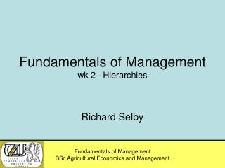 Fundamentals of Management wk 2– Hierarchies