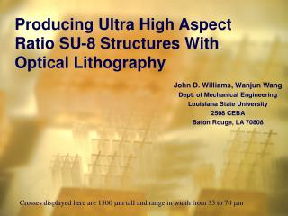 Producing Ultra High Aspect Ratio SU-8 Structures With Optical Lithography