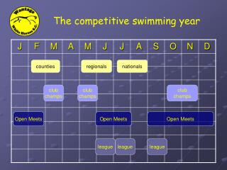 The competitive swimming year