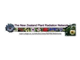 Species delimitation in recent New Zealand species radiations