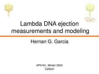 Lambda DNA ejection  measurements and modeling