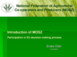 Introduction  of MOSZ Participation in  EU  decision making process