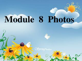 Module  8  Photos