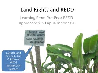 Land Rights and REDD