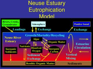 Neuse Estuary Eutrophication Model