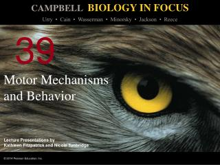 Motor Mechanisms and Behavior
