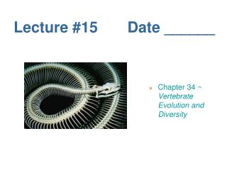 Lecture #15       Date ______