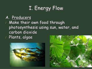 I. Energy Flow