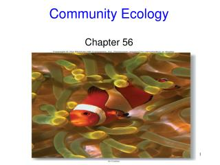 Community Ecology Chapter 56